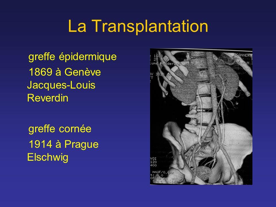 La Transplantation greffe épidermique