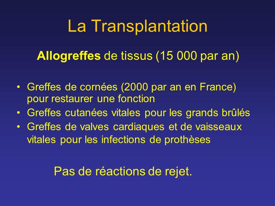 La Transplantation Allogreffes de tissus (15 000 par an)