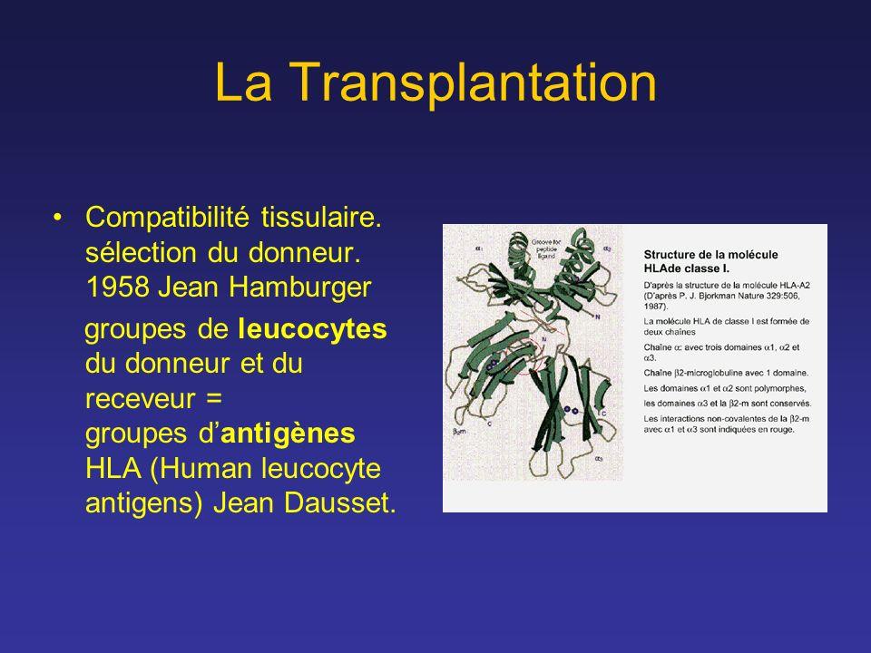 La Transplantation Compatibilité tissulaire. sélection du donneur. 1958 Jean Hamburger.