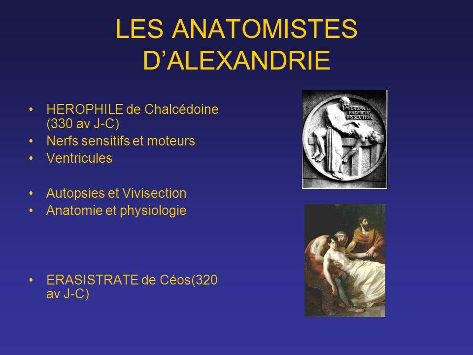 LES ANATOMISTES D'ALEXANDRIE