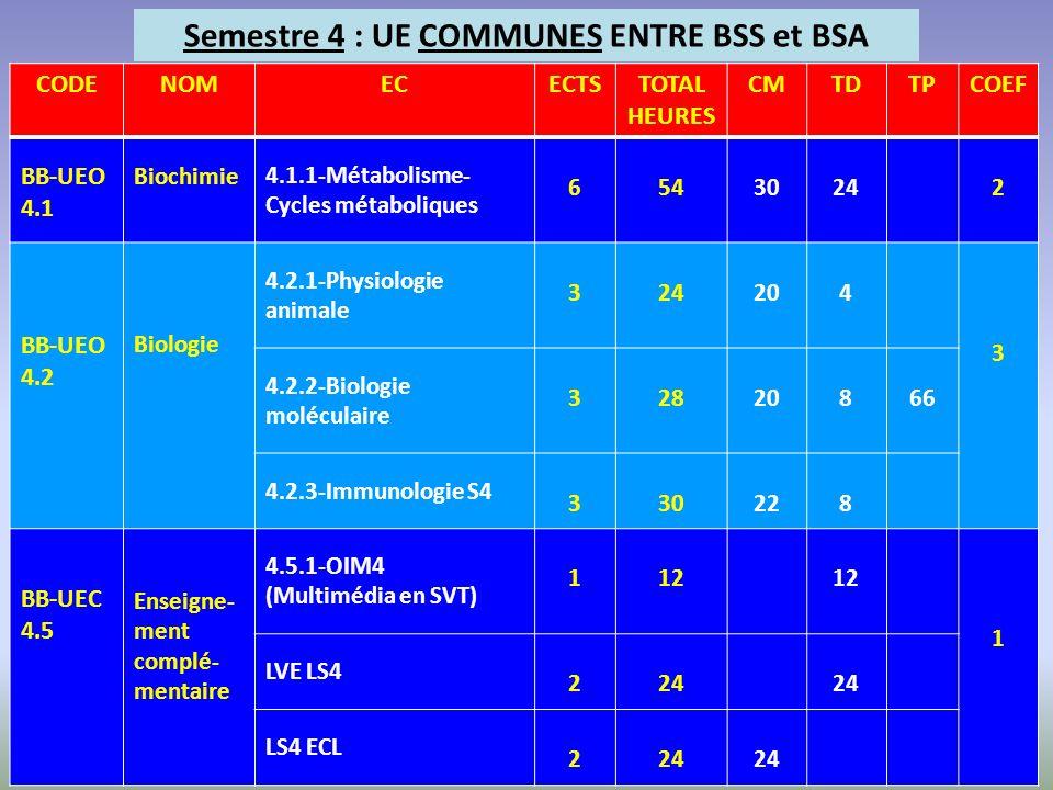 Semestre 4 : UE COMMUNES ENTRE BSS et BSA