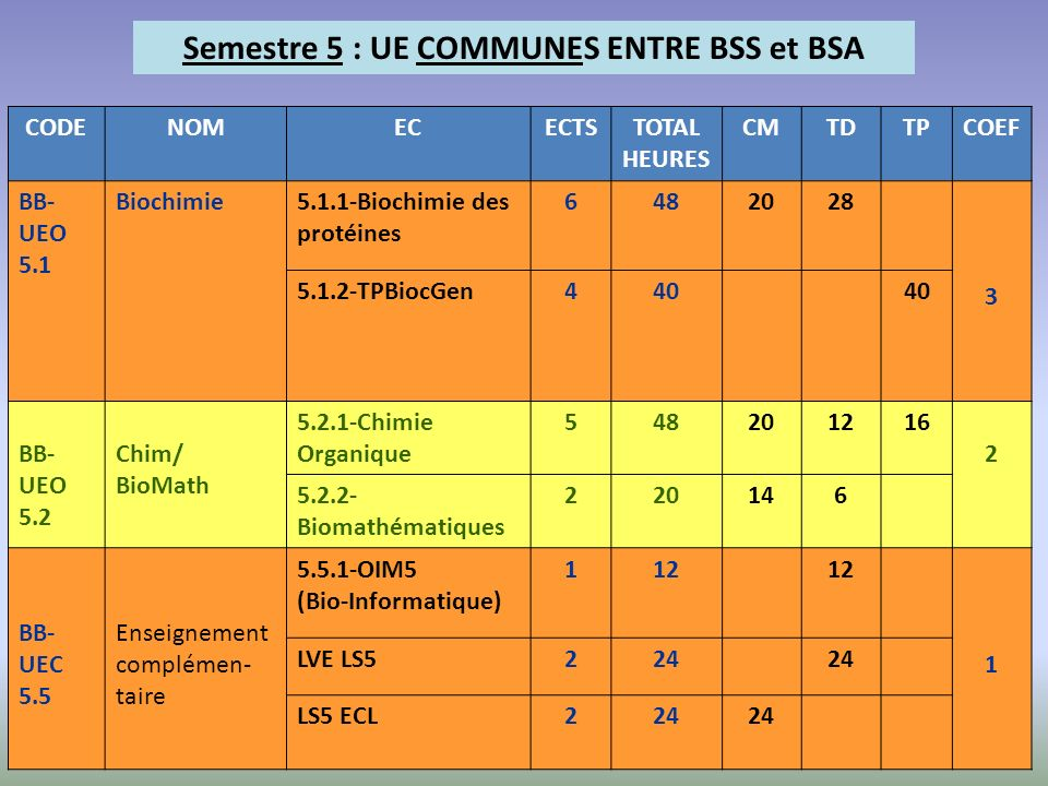 Semestre 5 : UE COMMUNES ENTRE BSS et BSA