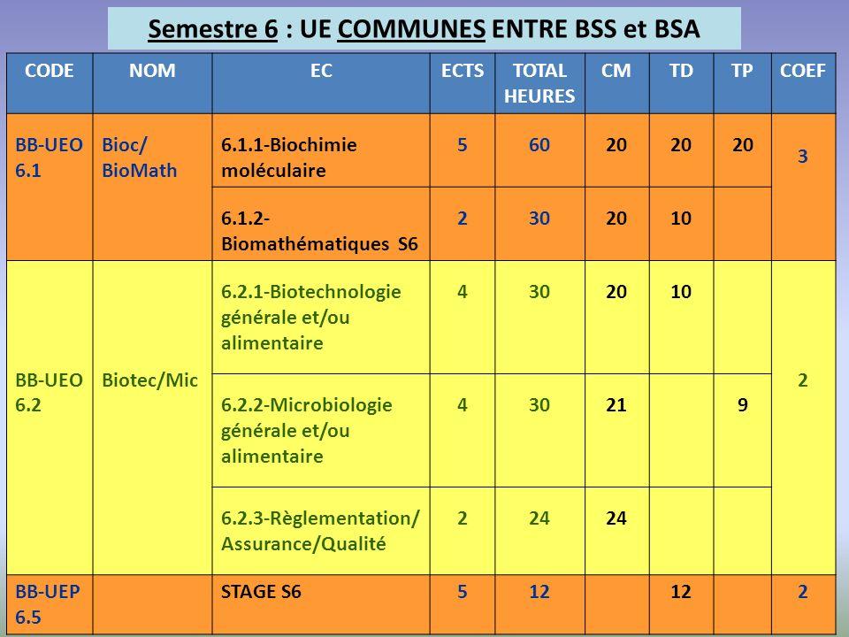 Semestre 6 : UE COMMUNES ENTRE BSS et BSA