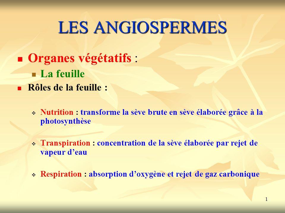 LES ANGIOSPERMES Organes végétatifs : La feuille Rôles de la feuille :
