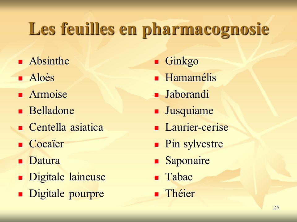Les feuilles en pharmacognosie