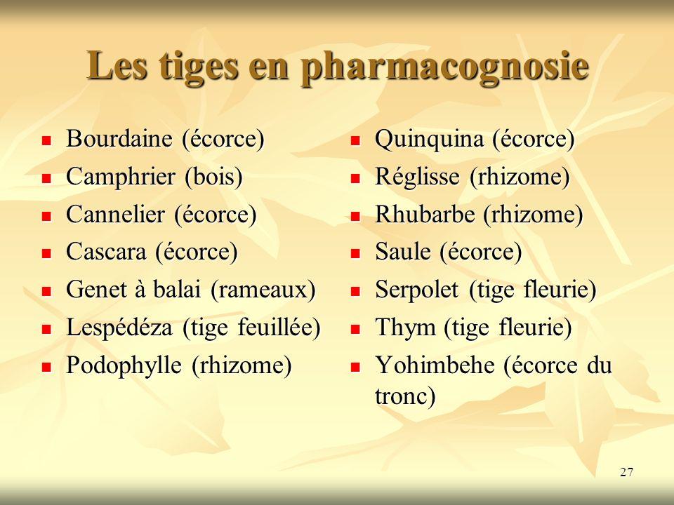 Les tiges en pharmacognosie