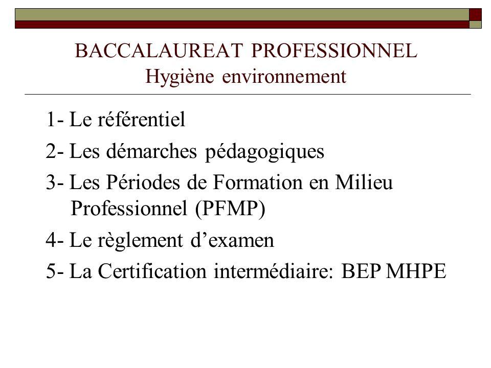 BACCALAUREAT PROFESSIONNEL Hygiène environnement