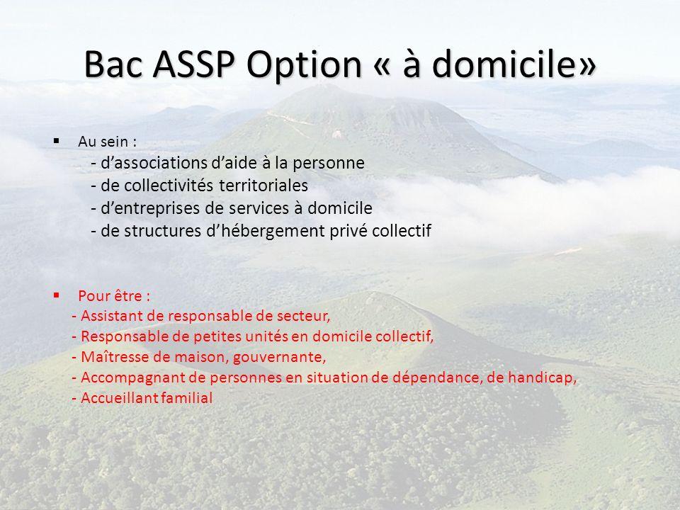 Bac ASSP Option « à domicile»