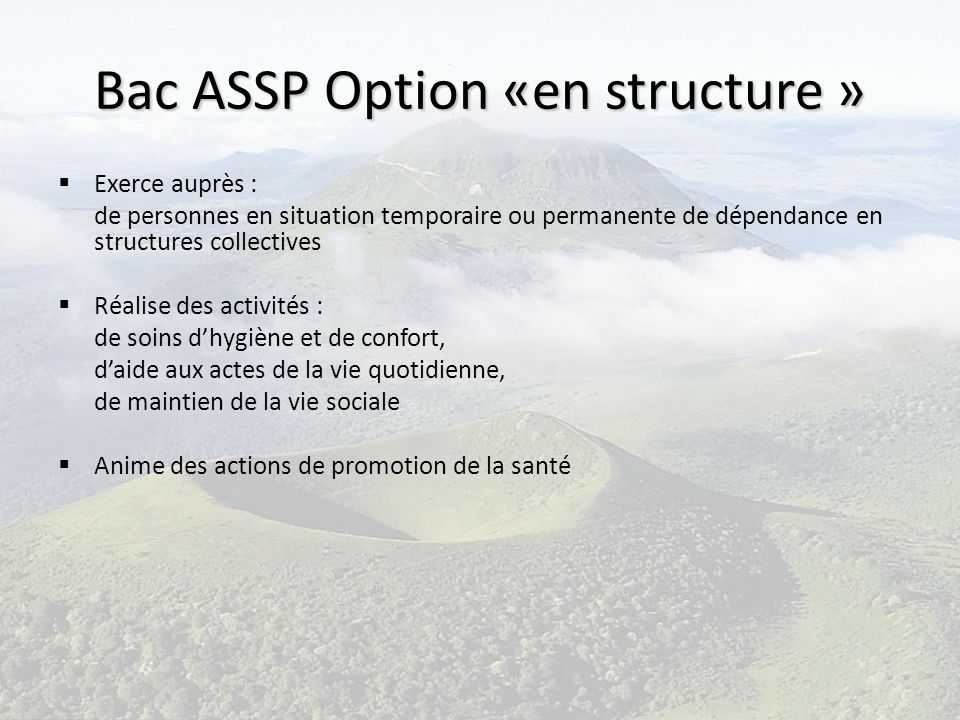 Bac ASSP Option «en structure »
