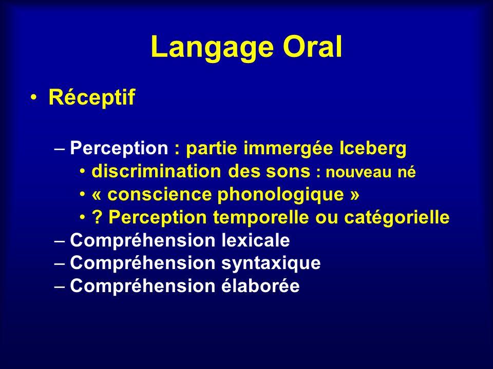 Langage Oral Réceptif Perception : partie immergée Iceberg