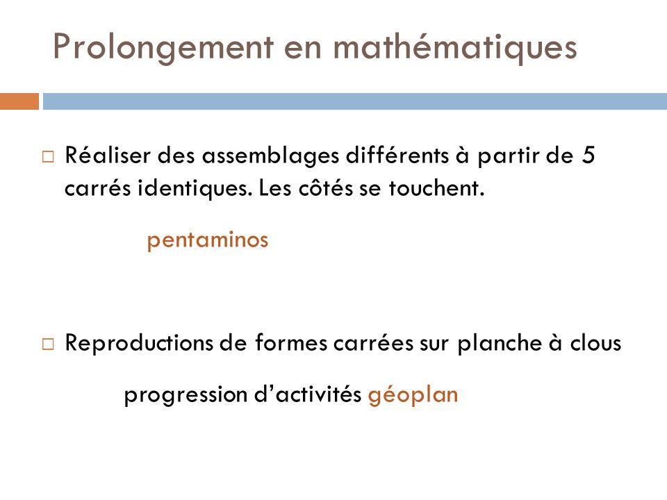 Prolongement en mathématiques