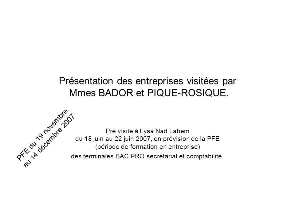 Présentation des entreprises visitées par Mmes BADOR et PIQUE-ROSIQUE.