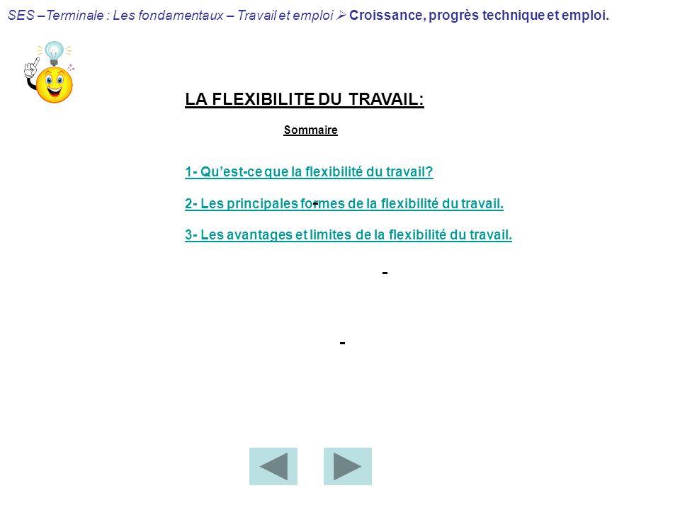 LA FLEXIBILITE DU TRAVAIL: