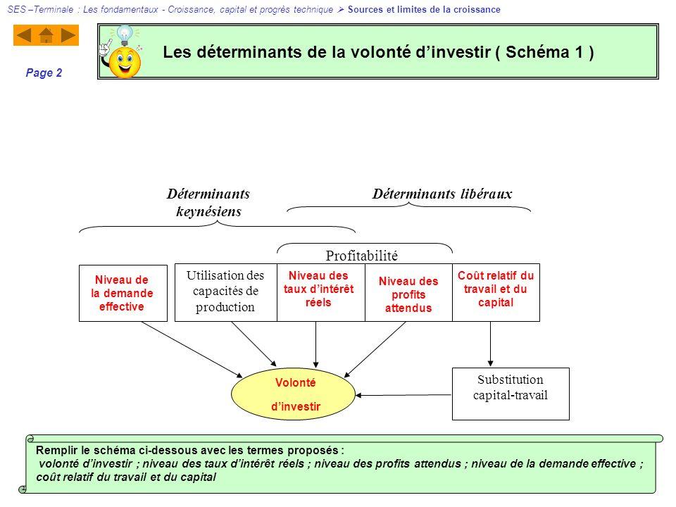 Les déterminants de la volonté d'investir ( Schéma 1 )