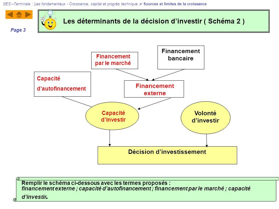 Les déterminants de la décision d'investir ( Schéma 2 )