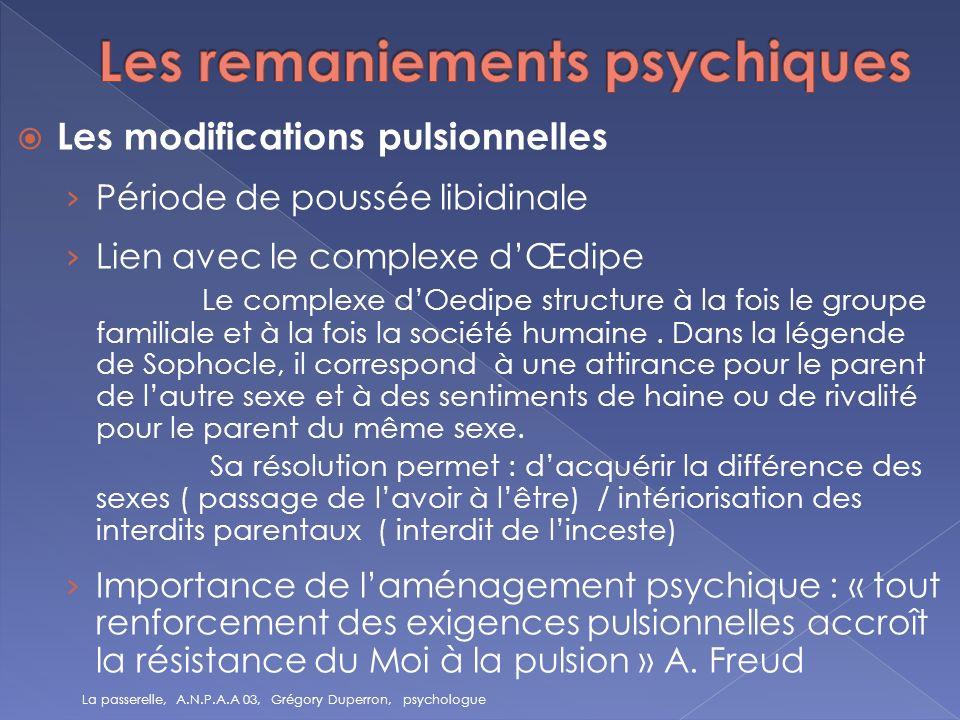 Les remaniements psychiques