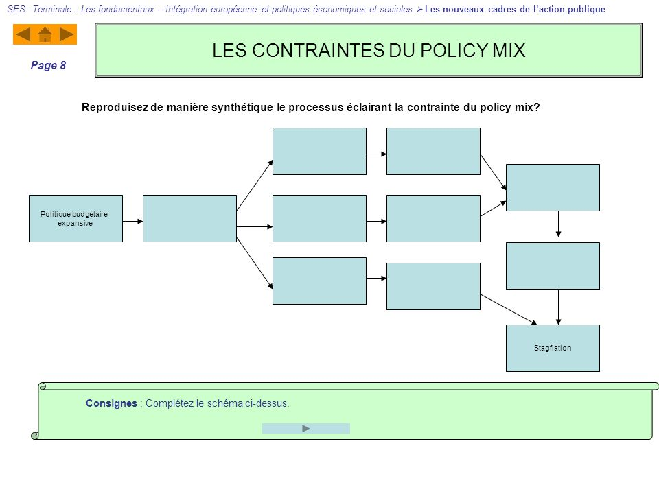 LES CONTRAINTES DU POLICY MIX