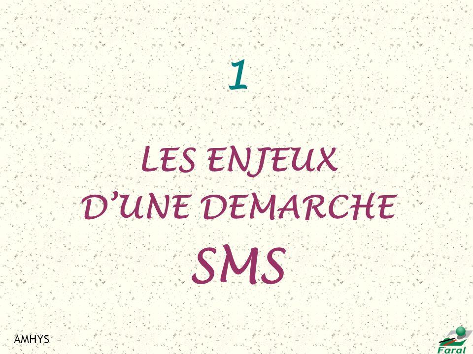 1 LES ENJEUX D'UNE DEMARCHE SMS