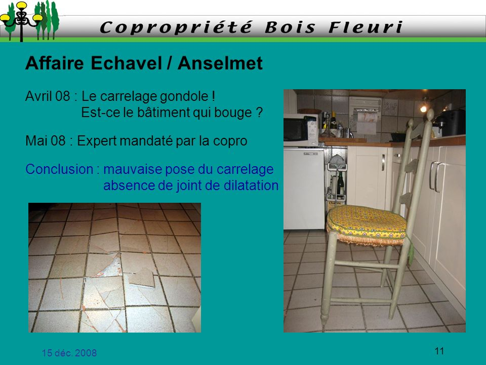 Affaire Echavel / Anselmet
