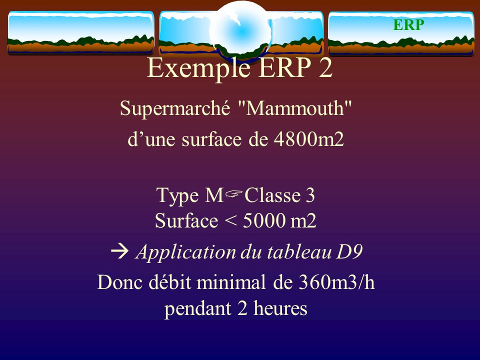 Exemple ERP 2 Supermarché Mammouth d'une surface de 4800m2