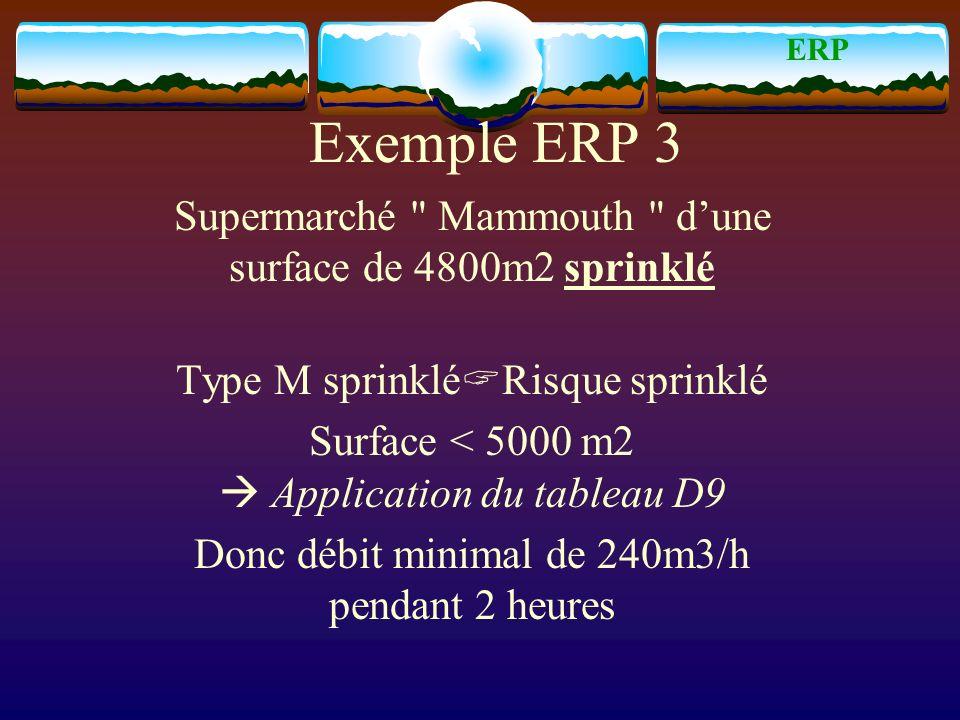 ERP Exemple ERP 3. Supermarché Mammouth d'une surface de 4800m2 sprinklé. Type M sprinkléRisque sprinklé.