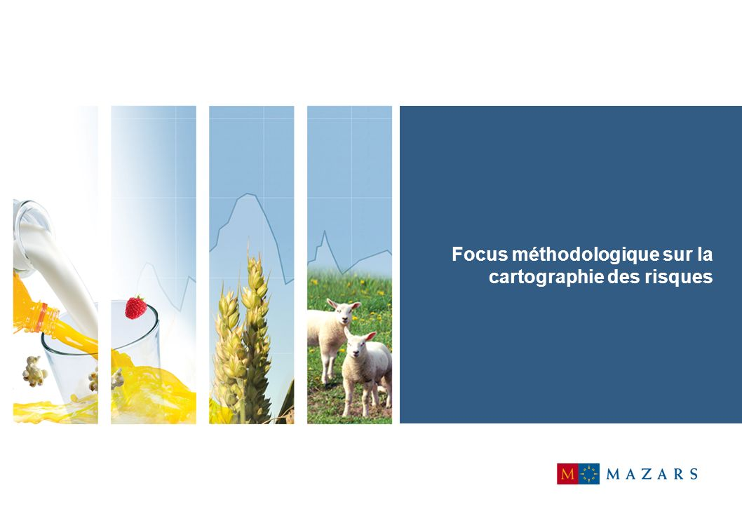 Focus méthodologique sur la cartographie des risques