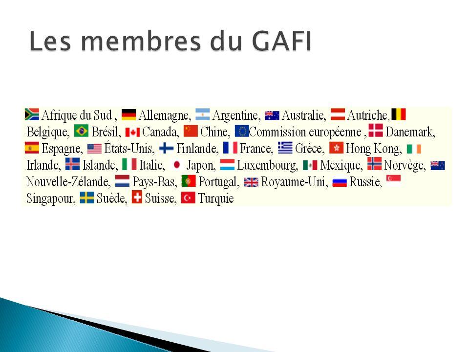 Les membres du GAFI