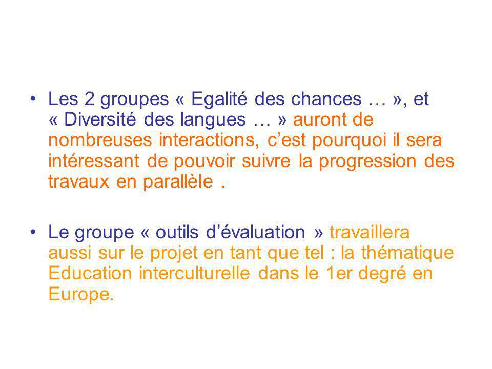 Les 2 groupes « Egalité des chances … », et « Diversité des langues … » auront de nombreuses interactions, c'est pourquoi il sera intéressant de pouvoir suivre la progression des travaux en parallèle .