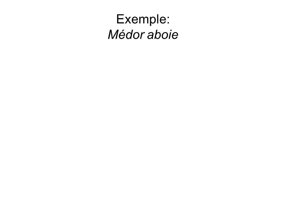 Exemple: Médor aboie