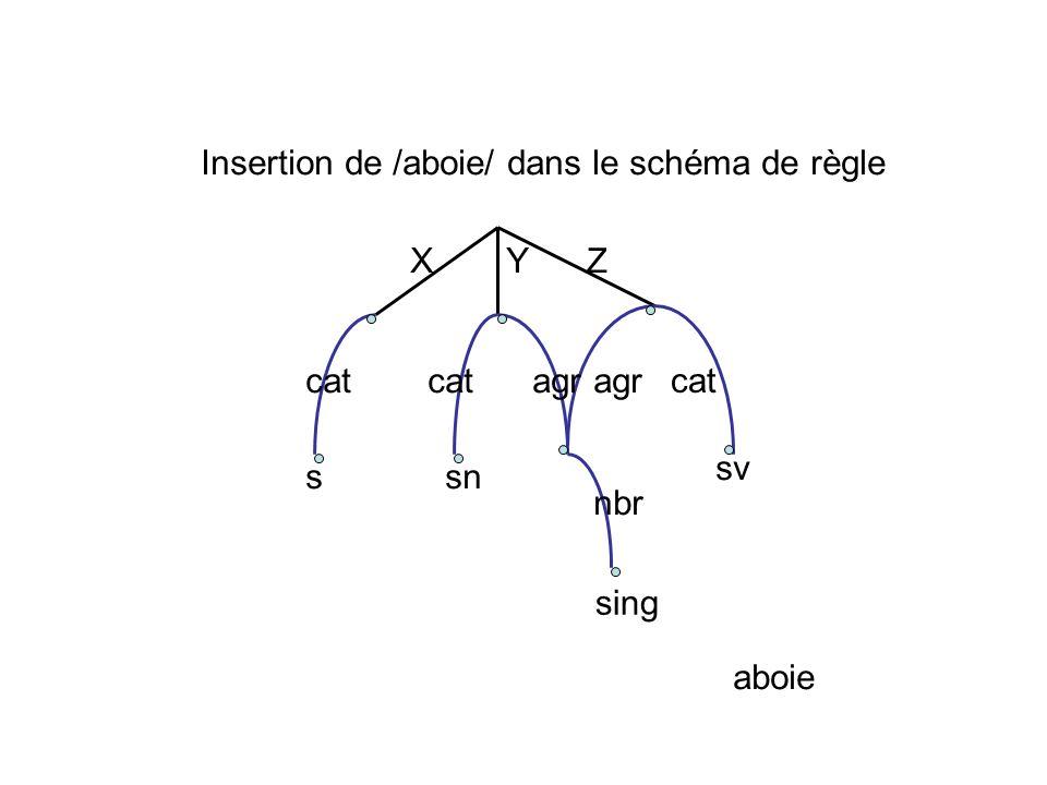 Insertion de /aboie/ dans le schéma de règle