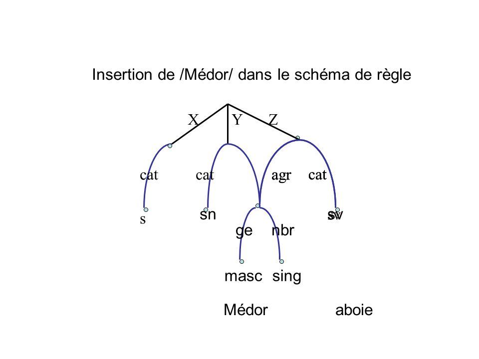 Insertion de /Médor/ dans le schéma de règle
