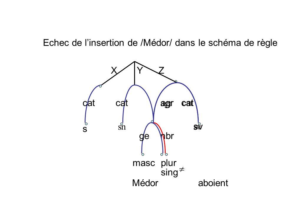 Echec de l'insertion de /Médor/ dans le schéma de règle