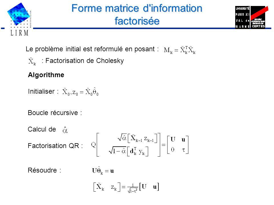Forme matrice d information factorisée