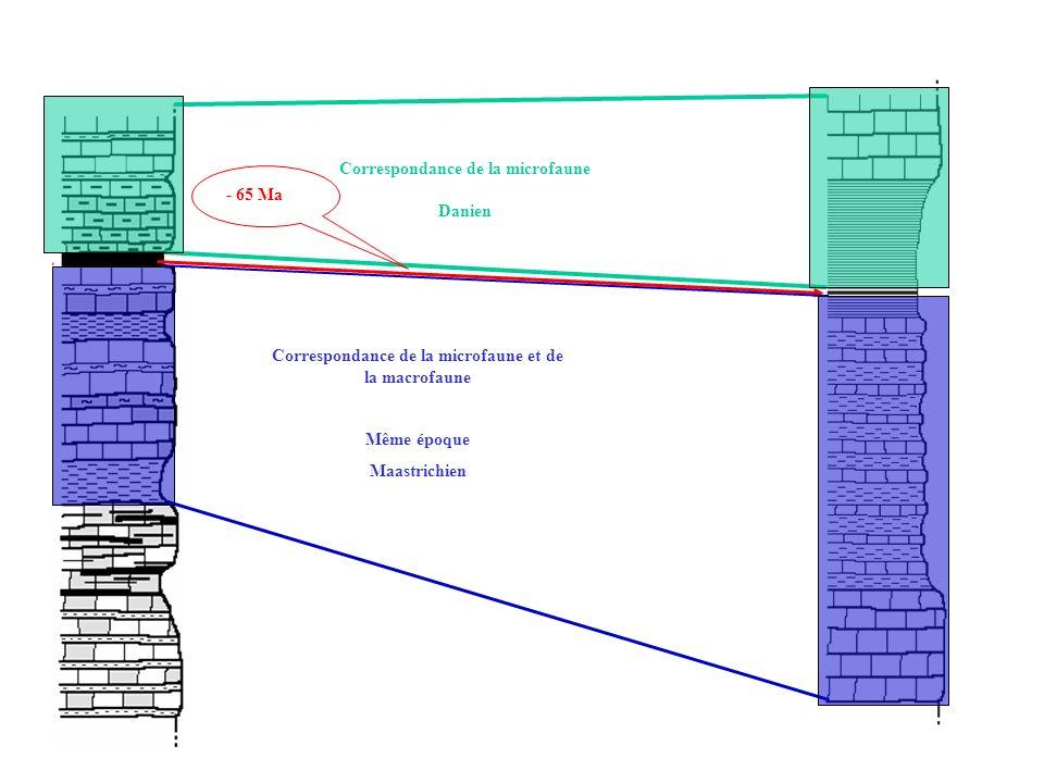 Correspondance de la microfaune Danien - 65 Ma