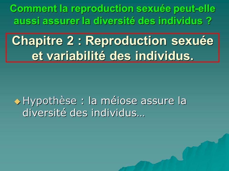 Chapitre 2 : Reproduction sexuée et variabilité des individus.