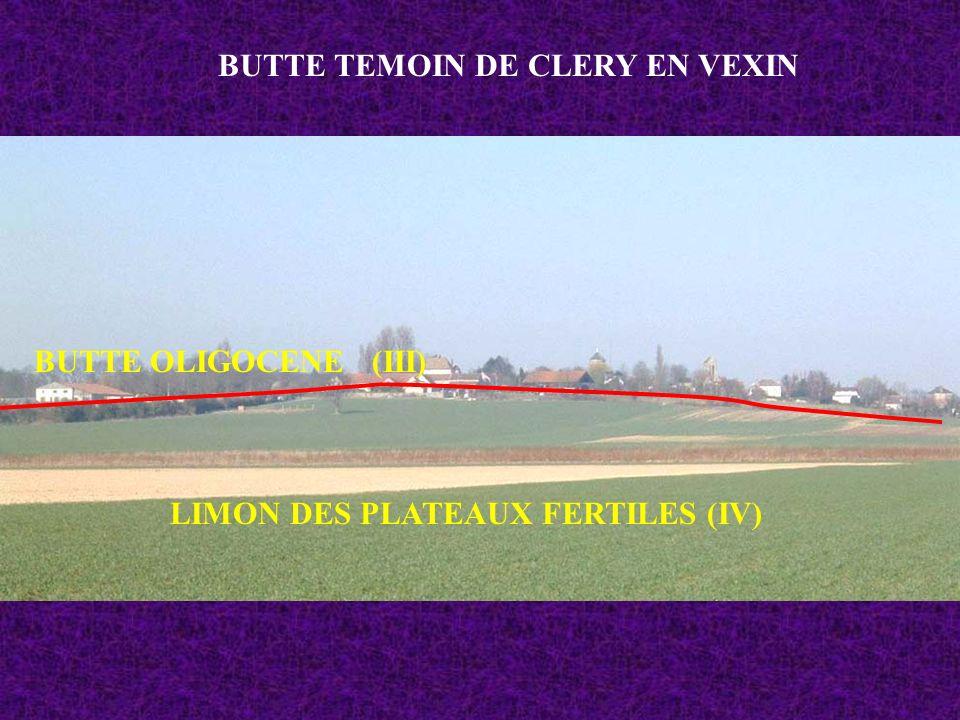 BUTTE TEMOIN DE CLERY EN VEXIN