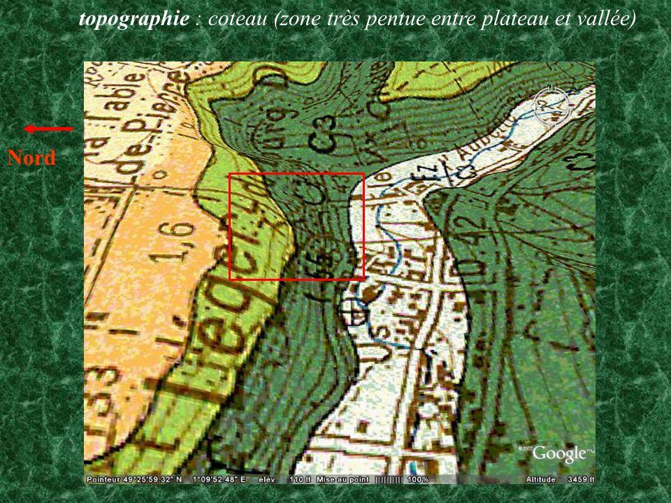 topographie : coteau (zone très pentue entre plateau et vallée)