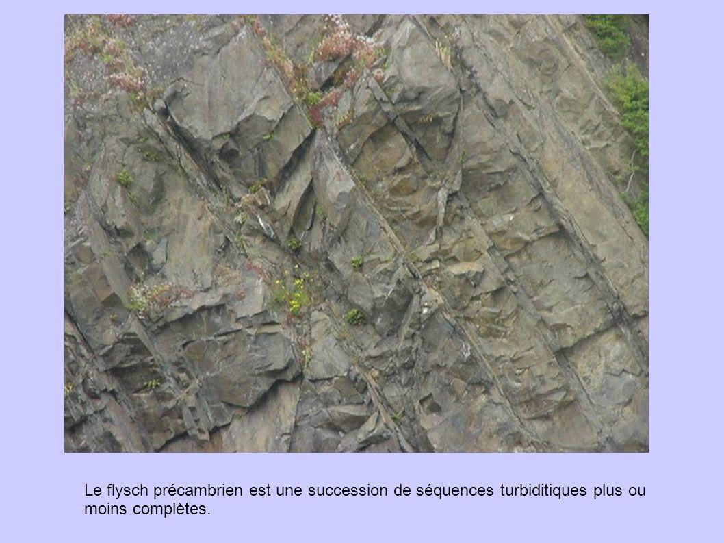 Le flysch précambrien est une succession de séquences turbiditiques plus ou moins complètes.
