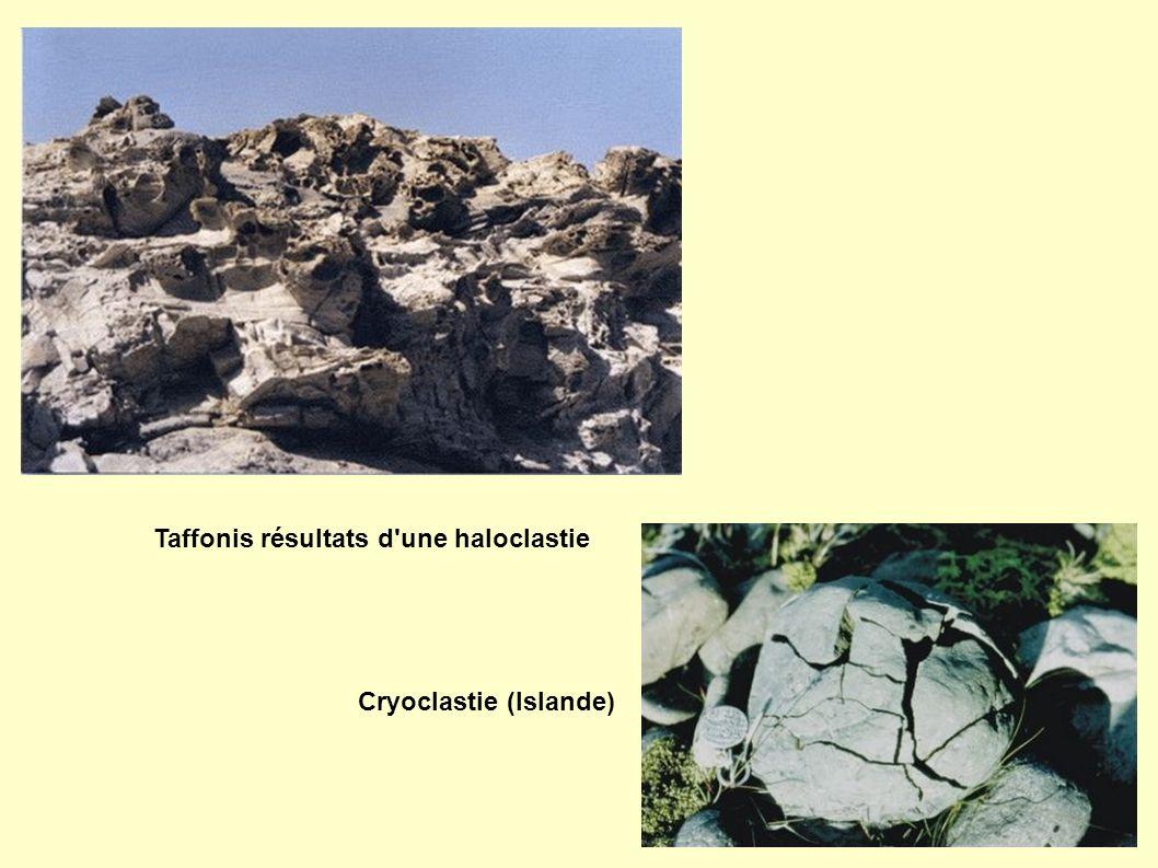 Taffonis résultats d une haloclastie Cryoclastie (Islande)