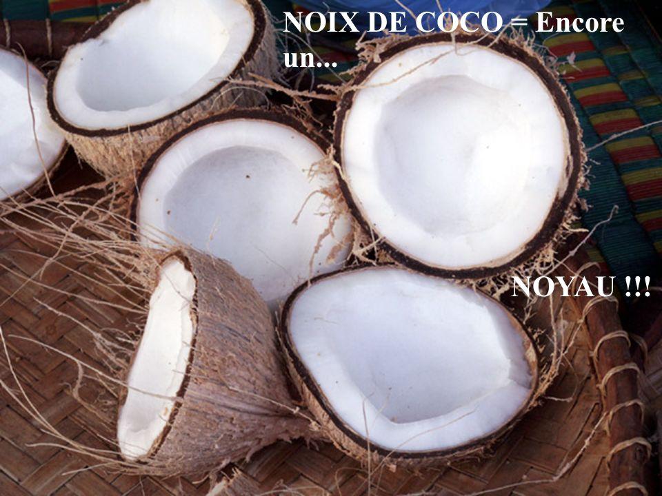 NOIX DE COCO = Encore un... NOYAU !!!