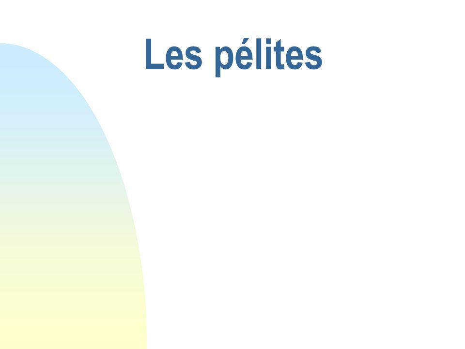 29/05/08 Les pélites