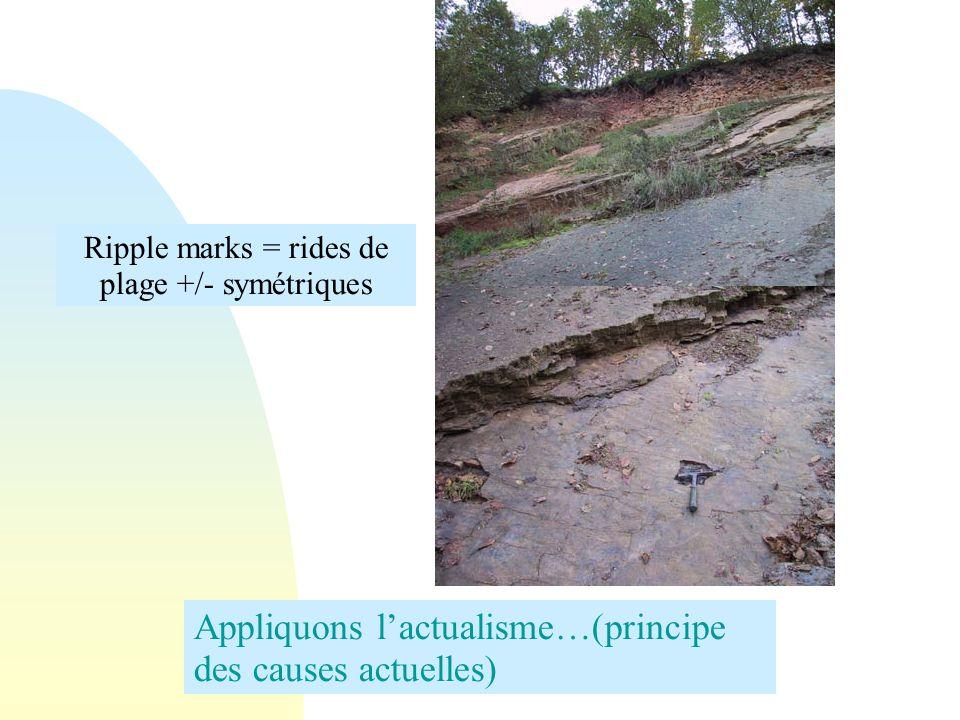 Ripple marks = rides de plage +/- symétriques