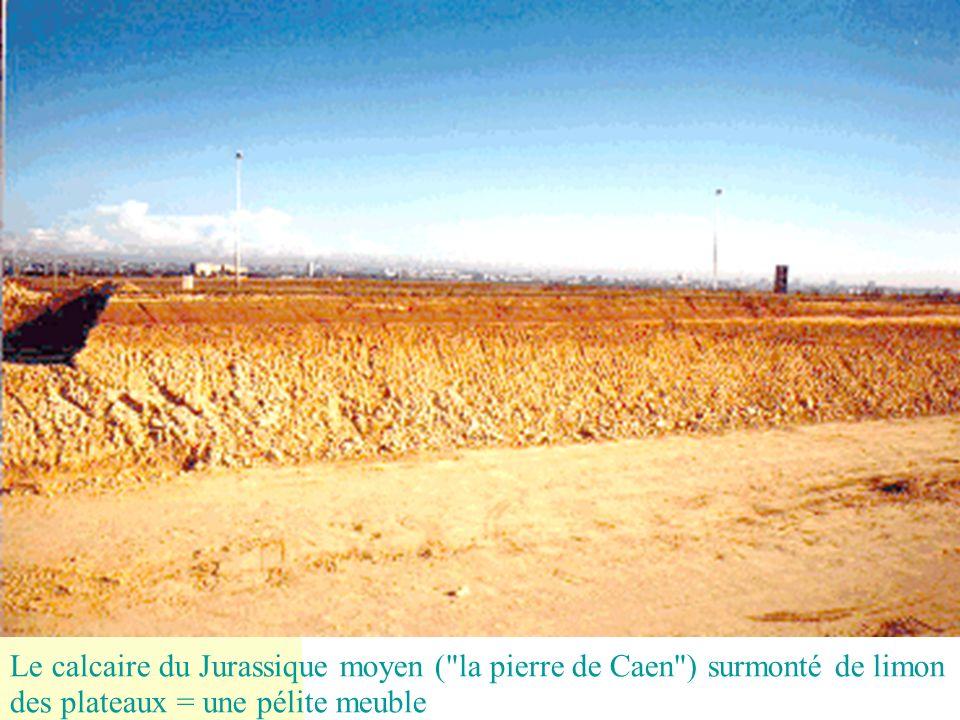 29/05/08 Le calcaire du Jurassique moyen ( la pierre de Caen ) surmonté de limon des plateaux = une pélite meuble.