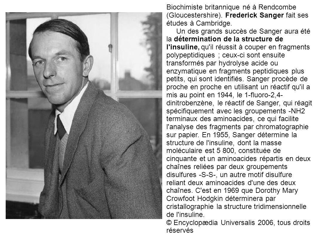 Biochimiste britannique né à Rendcombe (Gloucestershire)