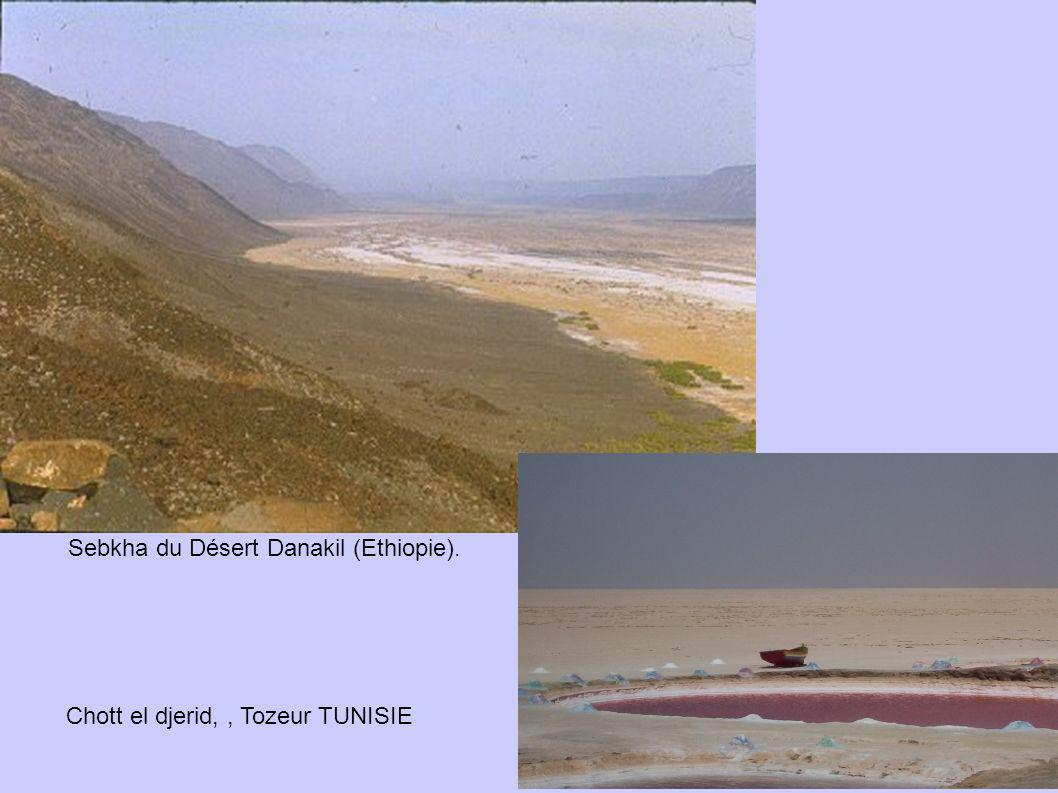 Sebkha du Désert Danakil (Ethiopie).