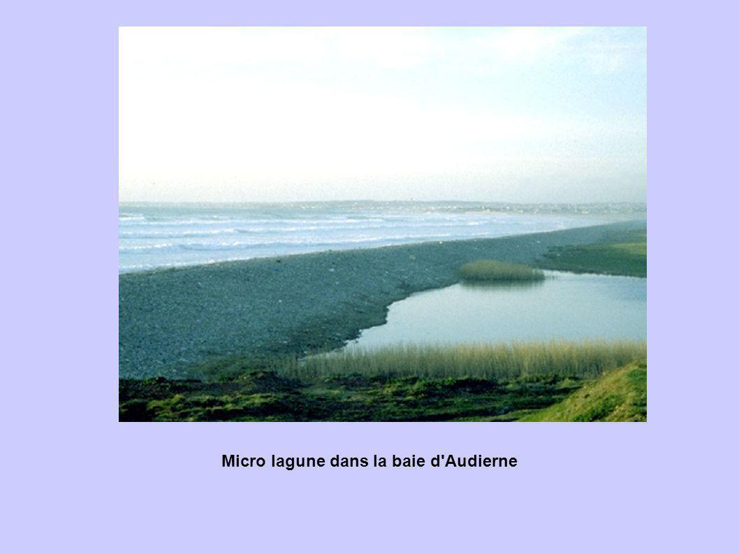 Micro lagune dans la baie d Audierne