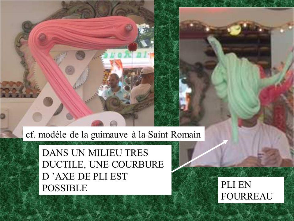 cf. modèle de la guimauve à la Saint Romain