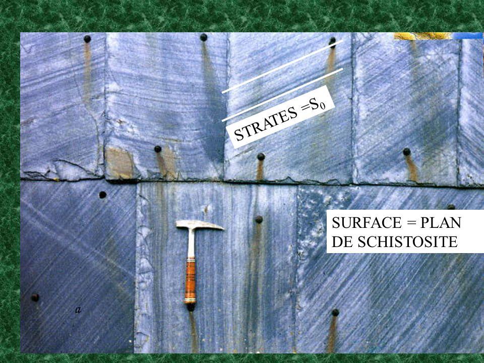 STRATES =S0 SURFACE = PLAN DE SCHISTOSITE