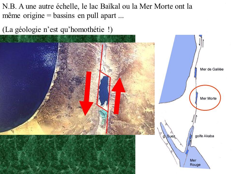 N.B. A une autre échelle, le lac Baïkal ou la Mer Morte ont la même origine = bassins en pull apart ...