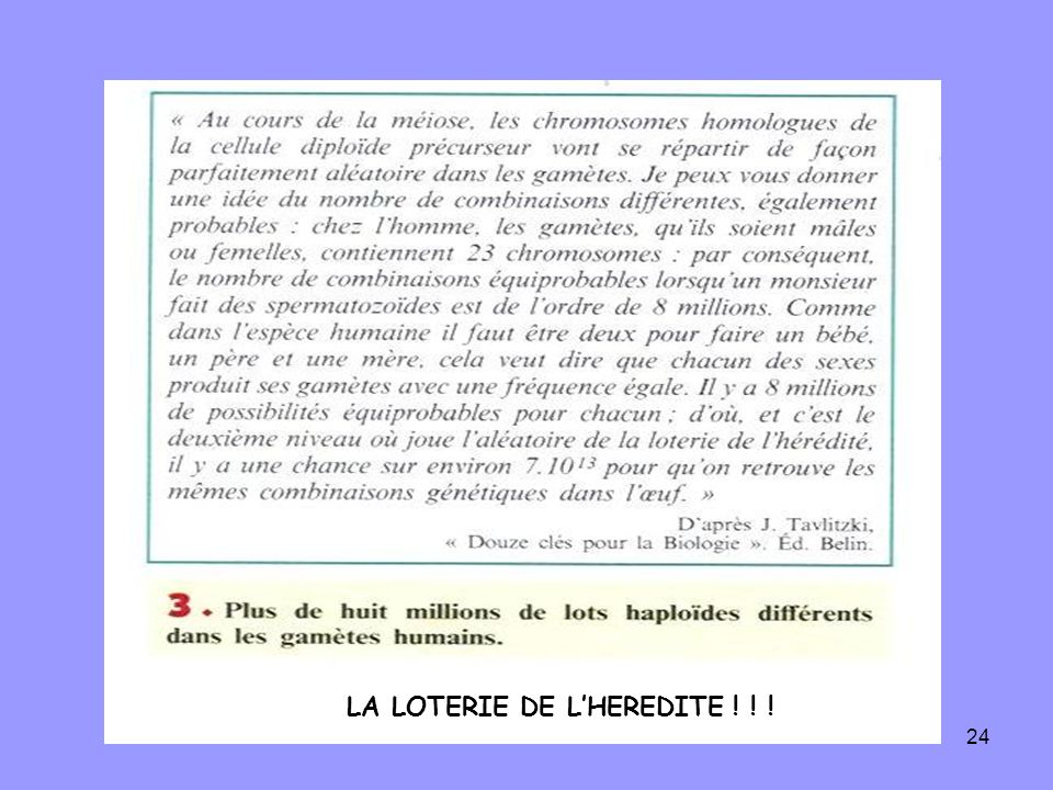 LA LOTERIE DE L'HEREDITE ! ! !
